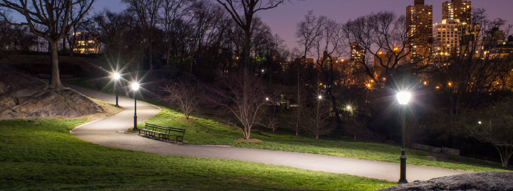 Central Park Night Path